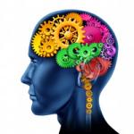 Kurzy kineziologie One Brain