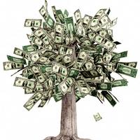 Tvoření peněz a hojnosti